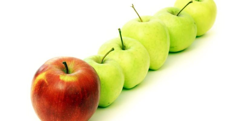 Best Fruit to Juice - Natural Seeker Apple