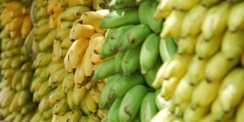 5 Mind Blowing Health Benefits of Bananas - Natural Seeker Blog