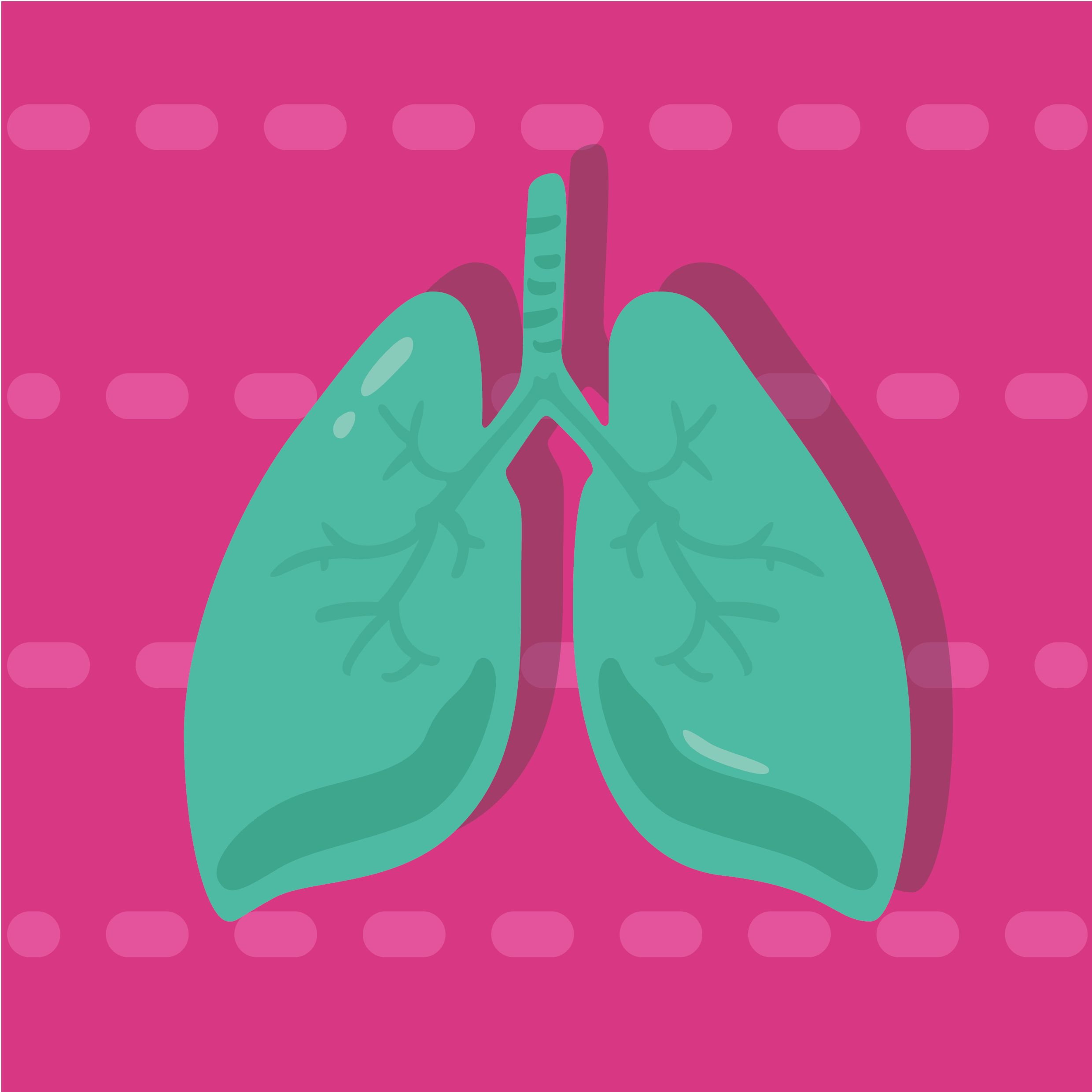 What to Do During an Asthma Attack - Natural Seeker