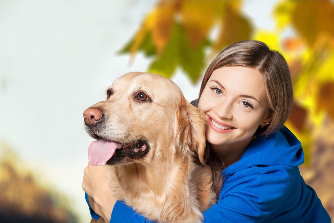 How to Beat Stress - Dog - Natural Seeket